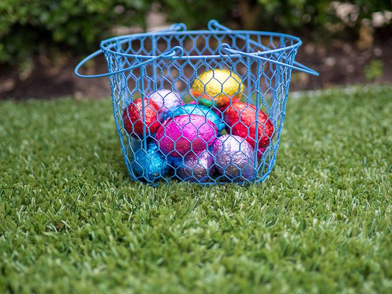 Have a Communal Basket for all the Eggs.