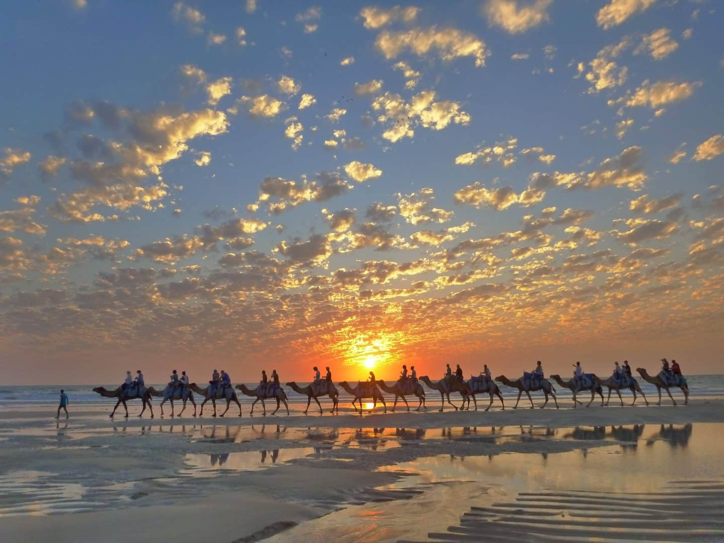 Camel Ride Cable Beach