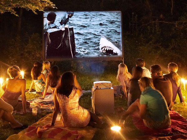 30 Backyard DIY Project Ideas - Backyard Movie Theatre, Australian Outdoor Living.
