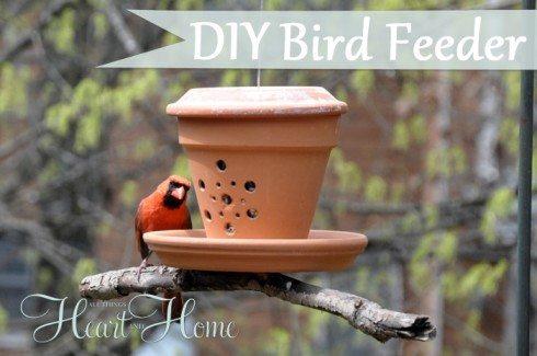 30 Backyard DIY Project Ideas - DIY Bird Feeder, Australian Outdoor Living.