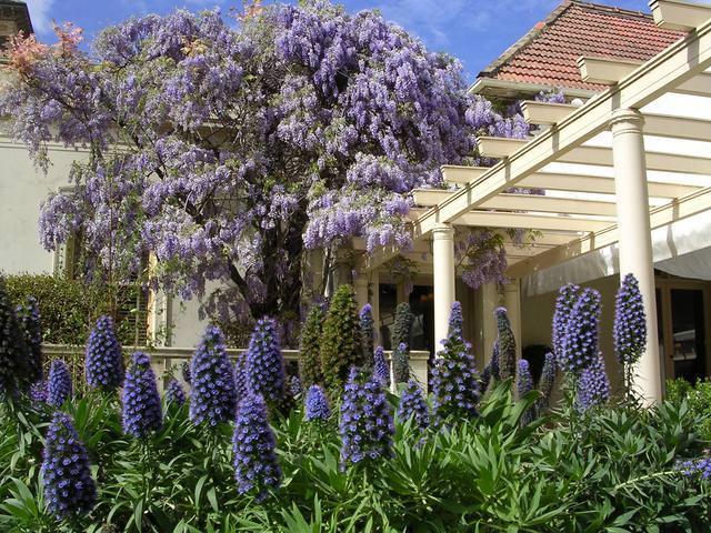 Australian Garden Designs - Rippon Lea, Melbourne