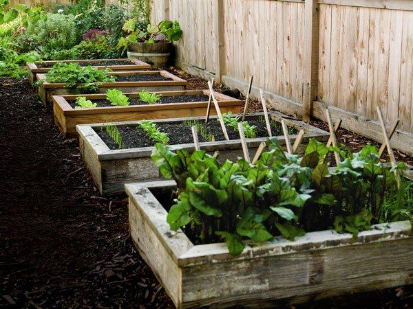 30 Backyard DIY Project Ideas - Raised Garden Bed, Australian Outdoor Living.