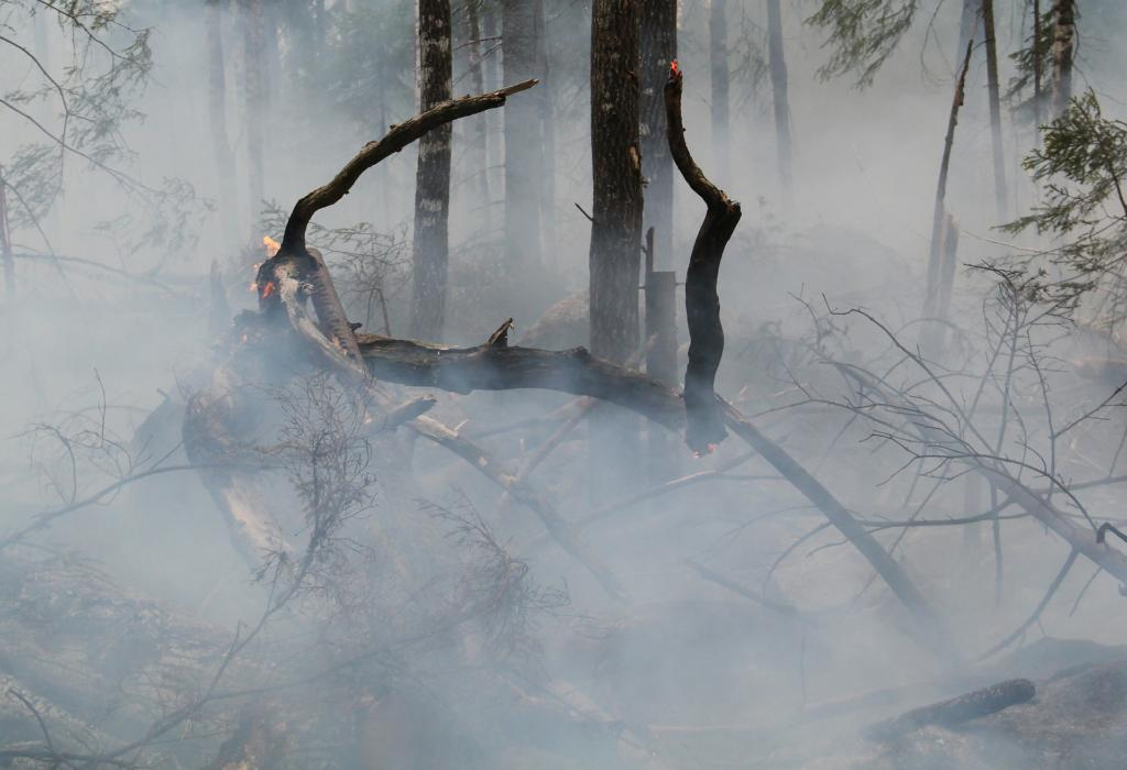 How to prepare for bushfire season - Smoke can be just as dangerous as the flames, Australian Outdoor Living.