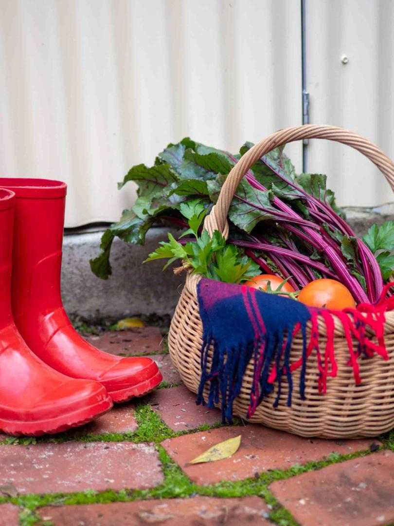 How to start a vegetable garden in your very own backyard - Pull your gumboots on and get out into the garden, Australian Outdoor Living.