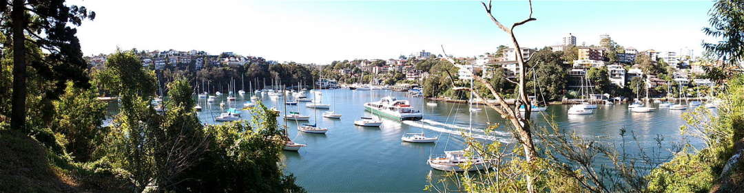 Dog-friendly walking trails in Australia - Cremorne Point Walk offers spectacular views over the Sydney skyline and harbour, Australian Outdoor Living.