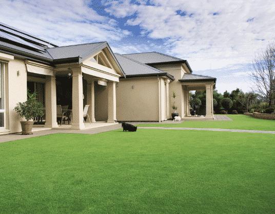 Artificial-Lawn-Blog-Size-100